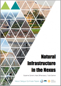 Infrastructure in the Nexus- Dialogue Synthesis