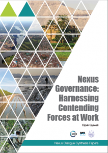 Nexus Governance cover